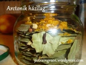 Arctonik házilag, Fotó: Kis Petra, Petra in Green