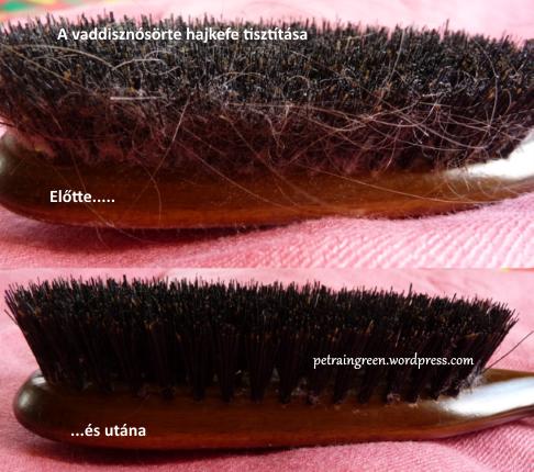 A vaddisznósörte hajkefe tisztítása, Fotó: Kis Petra, Petra in Green