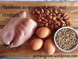 Fehérjében gazdag ételek, Forrás: wikimedia commons, A rangeof protein-rich foods by Smastronardo